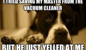 sad depressed dog animal tried save master vacuum cleaner yelled at me funny pics pictures pic picture image photo images photos lol