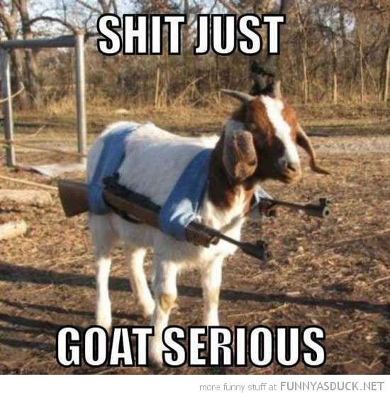 shit goat serious animal pun joke guns funny pics pictures pic picture image photo images photos lol