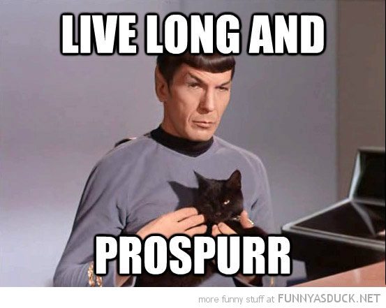 star trek spock cat live long prospurr tv funny pics pictures pic picture image photo images photos lol