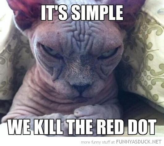 ugly bald cat animal simple kill red dot joker batman lolcat funny pics pictures pic picture image photo images photos lol