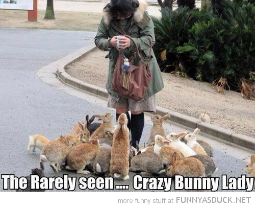 woman rabbits feeding animals rarely seen crazy bunny lady funny pics pictures pic picture image photo images photos lol