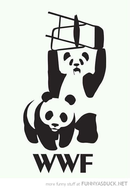 wwf wwe wrestling panda chair comic funny pics pictures pic picture image photo images photos lol