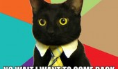 business cat meme leaving company want back in animal lolcat funny pics pictures pic picture image photo images photos lol