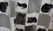 cat lolcat animal hiding shower curtain please continue pooping funny pics pictures pic picture image photo images photos lol