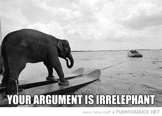 elephant water skis animal argument is irrelephant funny pics pictures pic picture image photo images photos lol