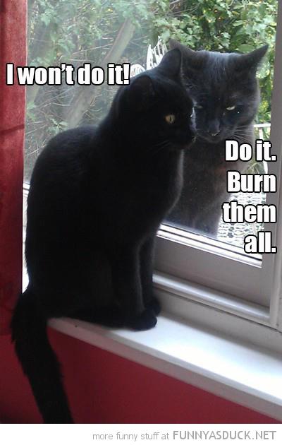 funny-evil-cat-window-do-it-burn-them-al