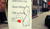 found cat poster sign chill as fuck funny pics pictures pic picture image photo images photos lol