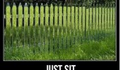 grass painted fence sit watch people run into it funny pics pictures pic picture image photo images photos lol