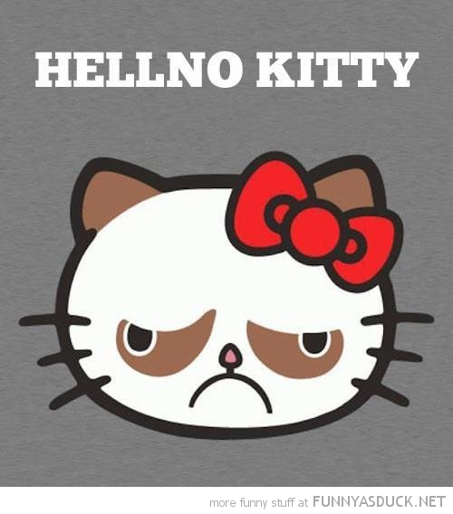 grumpy angry cat hello hellno kitty funny pics pictures pic picture image photo images photos lol