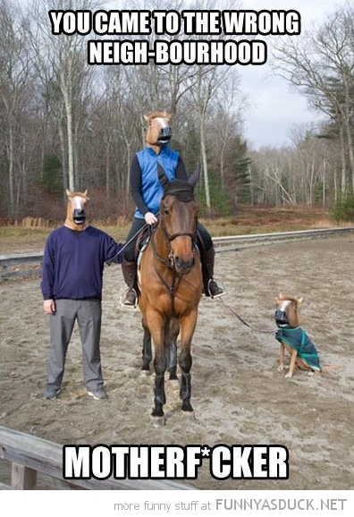 horse masks came wrong neighborhood animal motherfucker funny pics pictures pic picture image photo images photos lol