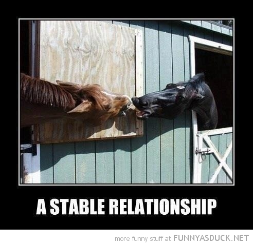 Stable Relationship | Funny As Duck | Funny Pictures