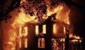 house fire spider panicked but gone now funny pics pictures pic picture image photo images photos lol