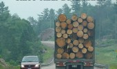 driving behind log wood lorry truck since final destination scare shit out me funny pics pictures pic picture image photo images photos lol