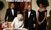 michelle obama afro hair poorly placed plant president funny pics pictures pic picture image photo images photos lol
