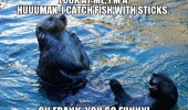 otter animal fishing i'm a human catch fish sticks laughing funny pics pictures pic picture image photo images photos lol