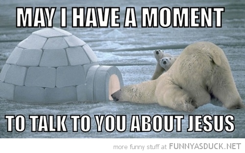 polar bear animal looking igloo moment talk jesus christ funny pics pictures pic picture image photo images photos lol