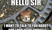 squirrel animal head hole hello talk jesus christ funny pics pictures pic picture image photo images photos lol