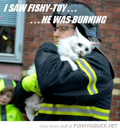 upset sad cat lolcat animal fireman rescue saw fishy tou burning funny pics pictures pic picture image photo images photos lol