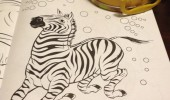 zebra coloring book black white done funny pics pictures pic picture image photo images photos lol