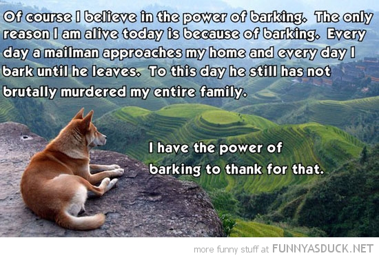 believe power barking dog animal sitting cliff hill mailman funny pics pictures pic picture image photo images photos lol