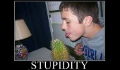boy man licking cactus plant stupidity hard way funny pics pictures pic picture image photo images photos lol