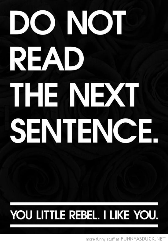 do not read next sentence you little rebel quote funny pics pictures pic picture image photo images photos lol