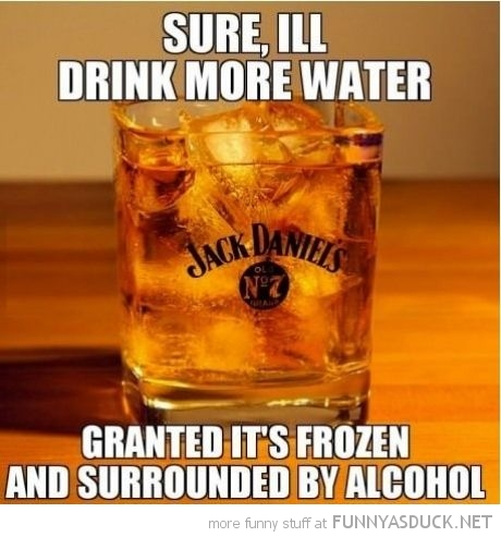 drink more water granted it's frozen surrounded by alcohol whiskey jack daniels funny pics pictures pic picture image photo images photos lol