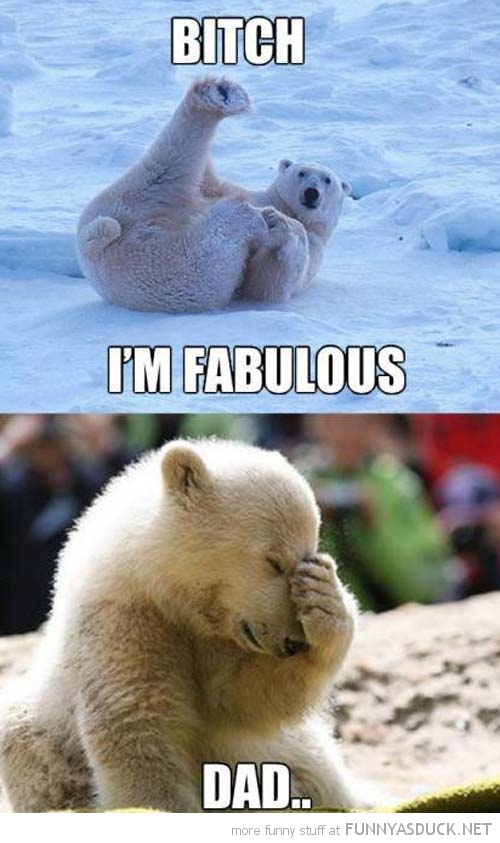 fabulous polar bear animal legs up embarrassed kid dad face palm  funny pics pictures pic picture image photo images photos lol