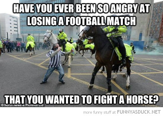 football riot man so angry fight horse police cop funny pics pictures pic picture image photo images photos lol