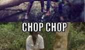 hipsters kissing tree boy girl chop motherfucker axe funny pics pictures pic picture image photo images photos lol