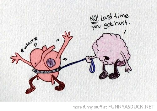 last time got hurt heart brain lasso comic do want funny pics pictures pic picture image photo images photos lol