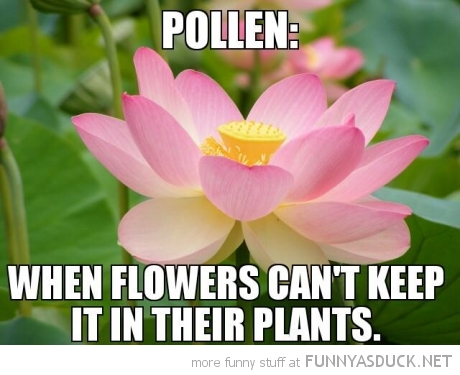 pollen flowers can't keep it in their pants funny pics pictures pic picture image photo images photos lol