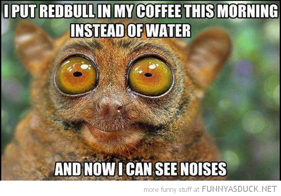 funny-tarsier-monkey-red-bull-coffee-see