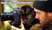 every monkey with camera thinks photographer animal funny pics pictures pic picture image photo images photos lol
