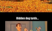 autumn leaves buzz woody dog turds everywhere funny pics pictures pic picture image photo images photos lol