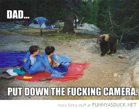bear kids boys camping dad put down camera animal funny pics pictures pic picture image photo images photos lol