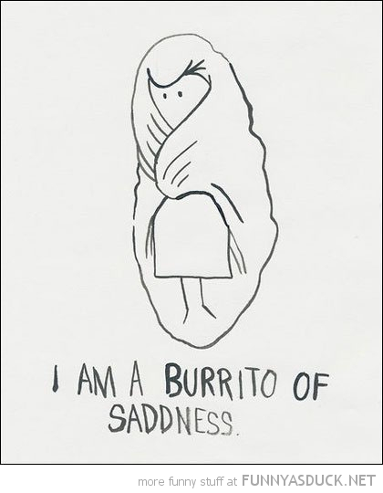 burrito of sadness comic wrapped blanket funny pics pictures pic picture image photo images photos lol