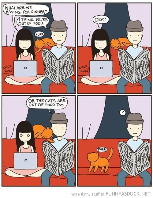 cats are out of food comic funny pics pictures pic picture image photo images photos lol