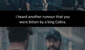 chuck norris bit cobra died pain expendables movie funny pics pictures pic picture image photo images photos lol