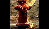 fire hydrant irony funny pics pictures pic picture image photo images photos lol