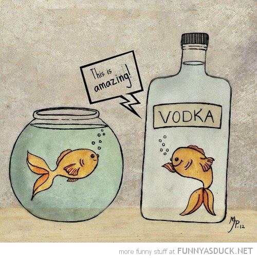 fish swimming bottle vodka comic this is amazing funny pics pictures pic picture image photo images photos lol