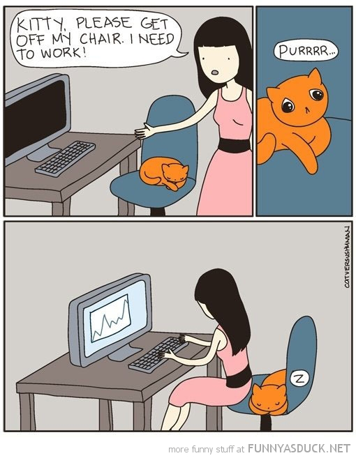 get off computer chair cat need to work comic funny pics pictures pic picture image photo images photos lol