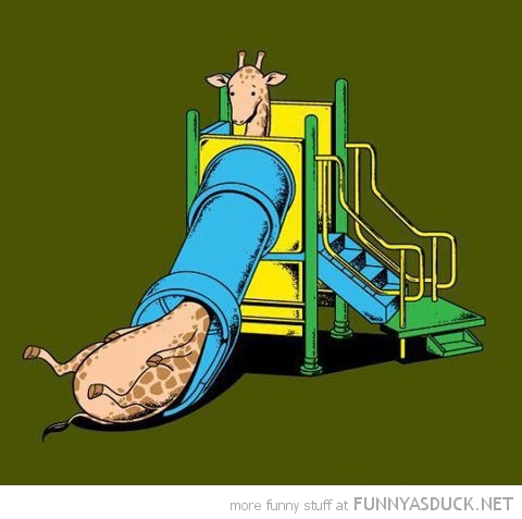 giraffe stuck slide chute comic funny pics pictures pic picture image photo images photos lol