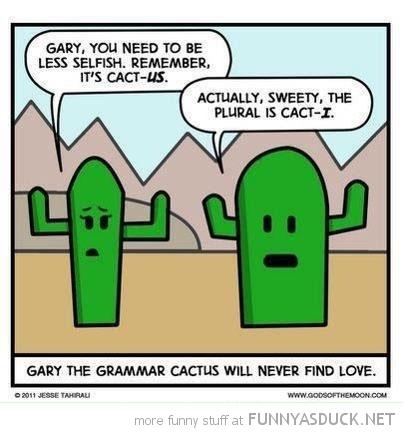 Grammar Cactus