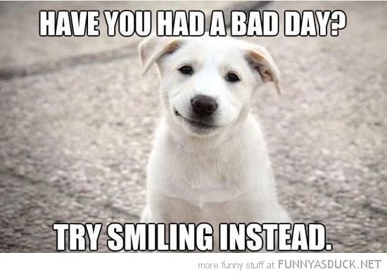 happy dog animal bad day try smiling funny pics pictures pic picture image photo images photos lol