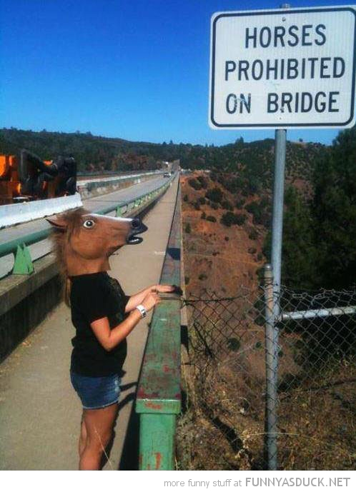 horses prohibited on bridge head mask sign funny pics pictures pic picture image photo images photos lol