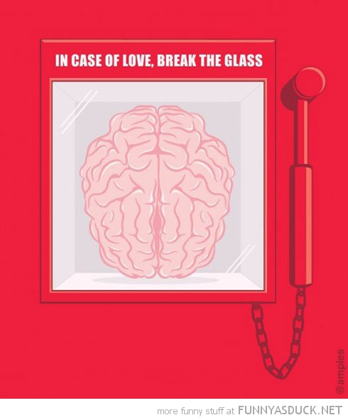 in case of love break glass brain comic funny pics pictures pic picture image photo images photos lol