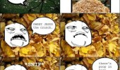 jump pile leaves poop rage comic meme funny pics pictures pic picture image photo images photos lol