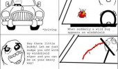 lady bug bird car windscreen rage comic meme funny pics pictures pic picture image photo images photos lol