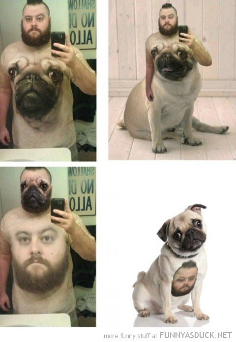 man pug dog t-shirt photoshop funny pics pictures pic picture image photo images photos lol